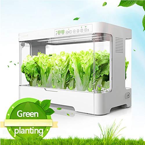 CRZJ Smart Indoor Garden mit intelligenter Temperaturregelung und Beleuchtung, intelligente Sauerstoffversorgung Hydroponics, 30pot