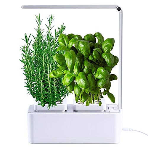amzWOW Smart Garden - Hausgarten - kräutergarten für die küche - Ziehen Sie Ihre eigenen aromatischen Kräuter zuhause - Keine Kapseln -Grow Lampe, Smart LED-Lampe enthalten, 28,5 x 11,7 x 37 cm