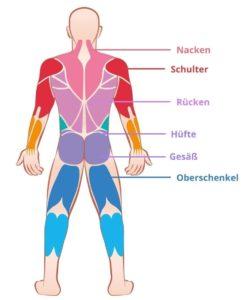 Massagezonen - Körperaufbau